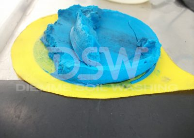 DSW Campione 7