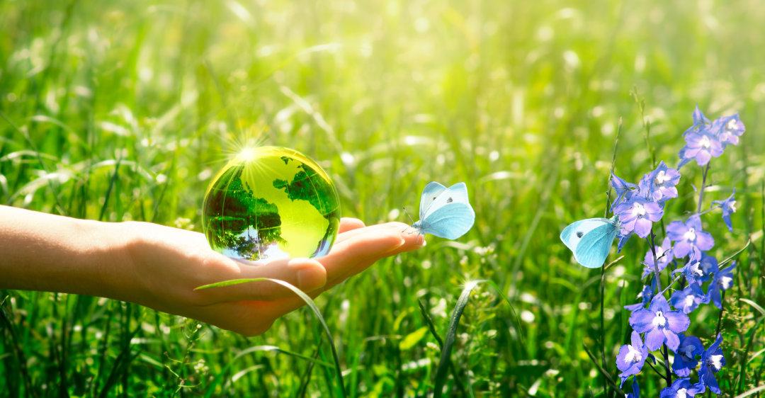 visione aziendale diemme soil washing